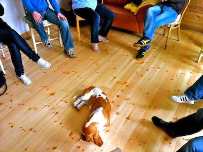 Manchmal ist auch Co-Trainerin Wilma dabei - als Mahnmal dafür, sich auch mal Pausen zu gönnen.