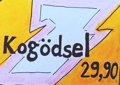 Sabine_Dinkel_Schweden_Skribble12